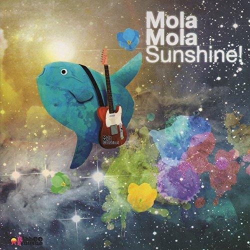 Mola Mola Sunshine