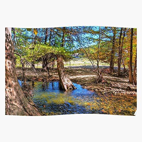 Fall Autumn Central Hil Country Colors Texas Treees Regalo para la decoración del hogar Wall Art Print Poster 11.7 x 16.5 inch