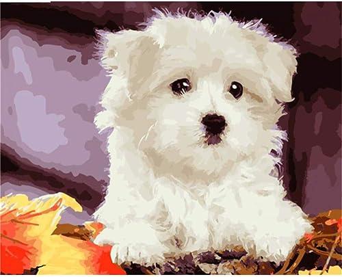 online barato HABU Auto-Completo Pintura Digital Sin Marco Pintura Pintura Pintura Animal Perro Guisante 40  50Cm Pintura Materias Primas  autentico en linea
