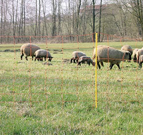 Corral Schafnetze Doppel Prong 108cm-50m, Clear, Unisex