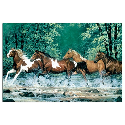 """Tree-Free Greetings EcoNotes Stationary- Blank Note Cards with Envelopes, 4"""" x 6"""", Spring Creek Run, Horse Themed, Boxed Set of 12 (FS66525)"""