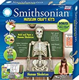 Smithsonian 18' Human Skeleton Perfect Cast Museum Cast, Paint, Display and Learn Craft Kit