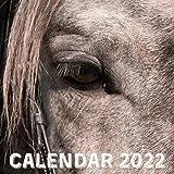 Horses Calendar 2022: September 2021 - December 2022 Monthly Planner Mini Calendar With Inspirational Quotes (Inspirational Calendars 2022)