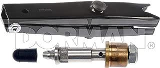 Dorman 38300 Door Hinge Detent Roller for Select Cadillac/Chevrolet/GMC Models