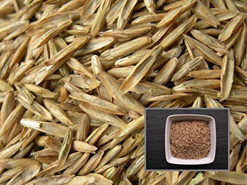 Ray Grass Anglais Prenium - 4 sachets de 3 grammes - Lolium Perenne L. - Perennial Rye-Grass - (Engrais vert - Green manure) - SEM02