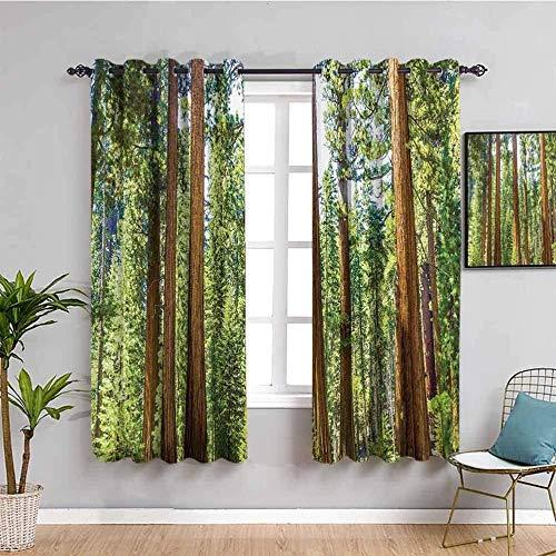 LucaSng Cortinas de Opacas - Verde Bosque árboles Paisaje - 280x245 cm - para Sala Cuarto Comedor Salon Cocina Habitación - 3D Impresión Digital con Ojales Aislamiento Térmico Cortinas