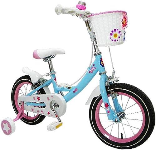 venta al por mayor barato Axdwfd Infantiles Bicicletas Bicicletas Bicicletas Bicicletas para Niños 12 14 16 18 Pulgadas, Bicicleta para Niños de Acero de Alto Carbono con Rueda de Entrenamiento Regalo para Niños y niñas de 2 a 9 años de Edad  tiempo libre