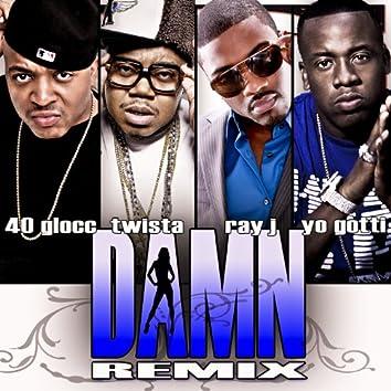 Damn (Remix) [feat. Ray J, Twista and Gotti] - Single