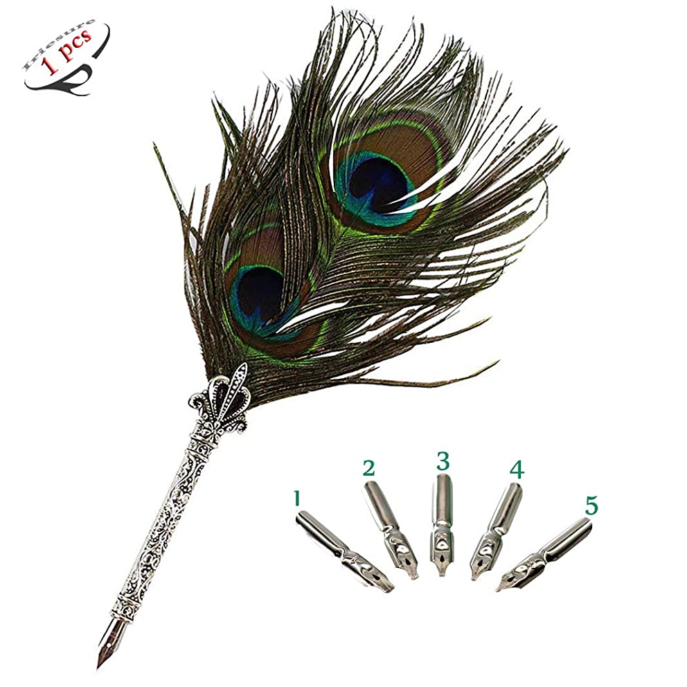 Antique Nature Feather Pen and 5 Calligraphy Nibs, Best Gift & Dip Pen for All - Peacock Feather Pen, 1PCS
