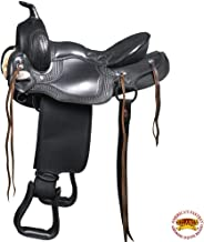 Best gaited endurance horse Reviews