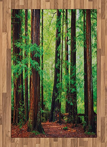Ambesonne Woodland Area Rug, Redwood Trees Northwest Rain Forest Tropical Scenic Wild Nature Branch, Flat Woven Accent Rug for Living Room Bedroom Dining Room, 4' X 5.7', Green Redwood