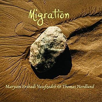 Migration (feat. Thomas Nordlund)