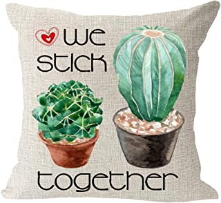 Best heart shaped cactus buy Reviews