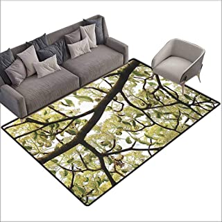 Baby Crawling Area Mats Farmhouse,Dogwood Tree Seeds Bonsai Art Decorations Home Accessories Nature Lover Bright Sky Digital Print,Green Brown Off White 48