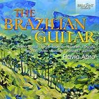 The Brazilian Guitar by Flavio Apro