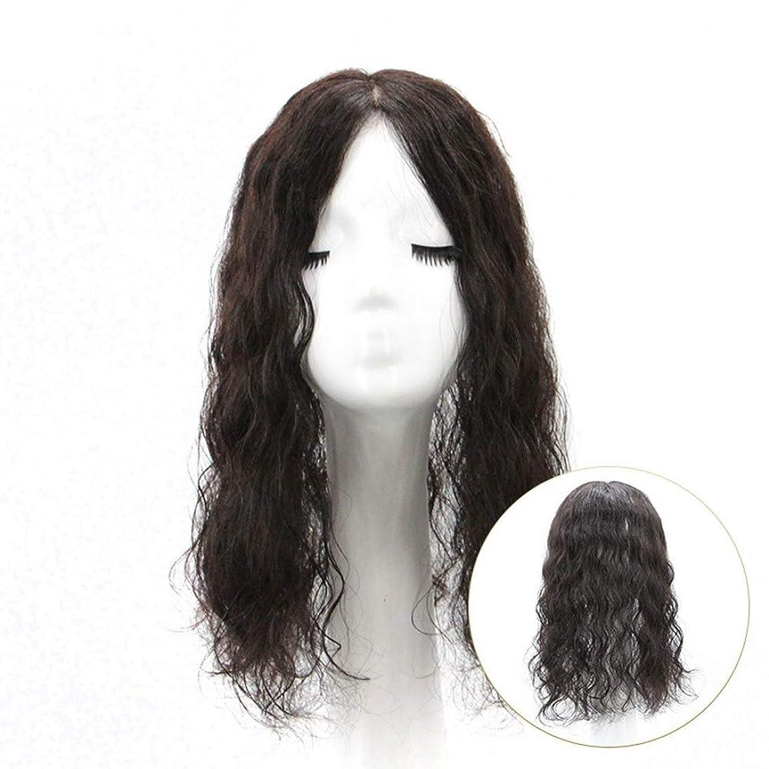 キャビンブリーフケースライバルYrattary 女性の長い巻き毛のふわふわナチュラルクリップで人間の髪の毛のカバー白髪交換ピース女性の合成かつらレースかつらロールプレイングかつら (色 : [7x10] 35cm natural black)