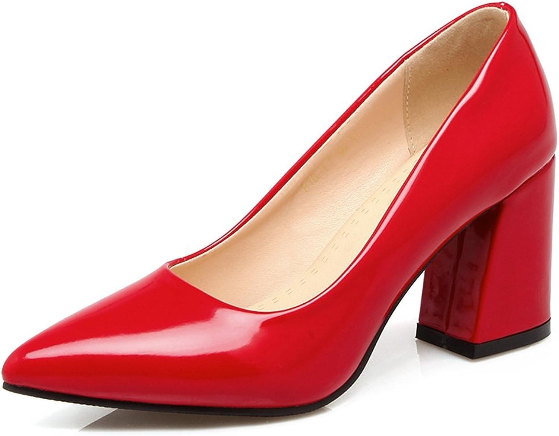 SaraIris Women's Chunky high Heel Pointed Toe Office shoes Basic Pumps