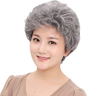 BESTUNG Short Silver Gray Synthetic Wigs Fluffy Little Curly Wavy Mom Grey Costume Wigs For Old Middle Age Women Office Lady (Silver Grey)