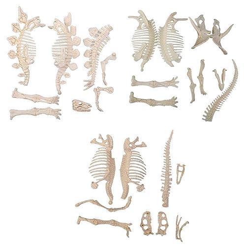 Dinosaur Bones For Sandbox: Amazon com