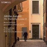 Viola d'amore Sonata No. 13 in C Major: II. Non Presto