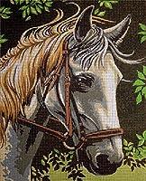 クロスステッチキットDIY刺繍セット 森の動物馬23x30cm 図柄印刷 初心者 ホームの装飾 風景 刺繍糸 針 ホームの装飾