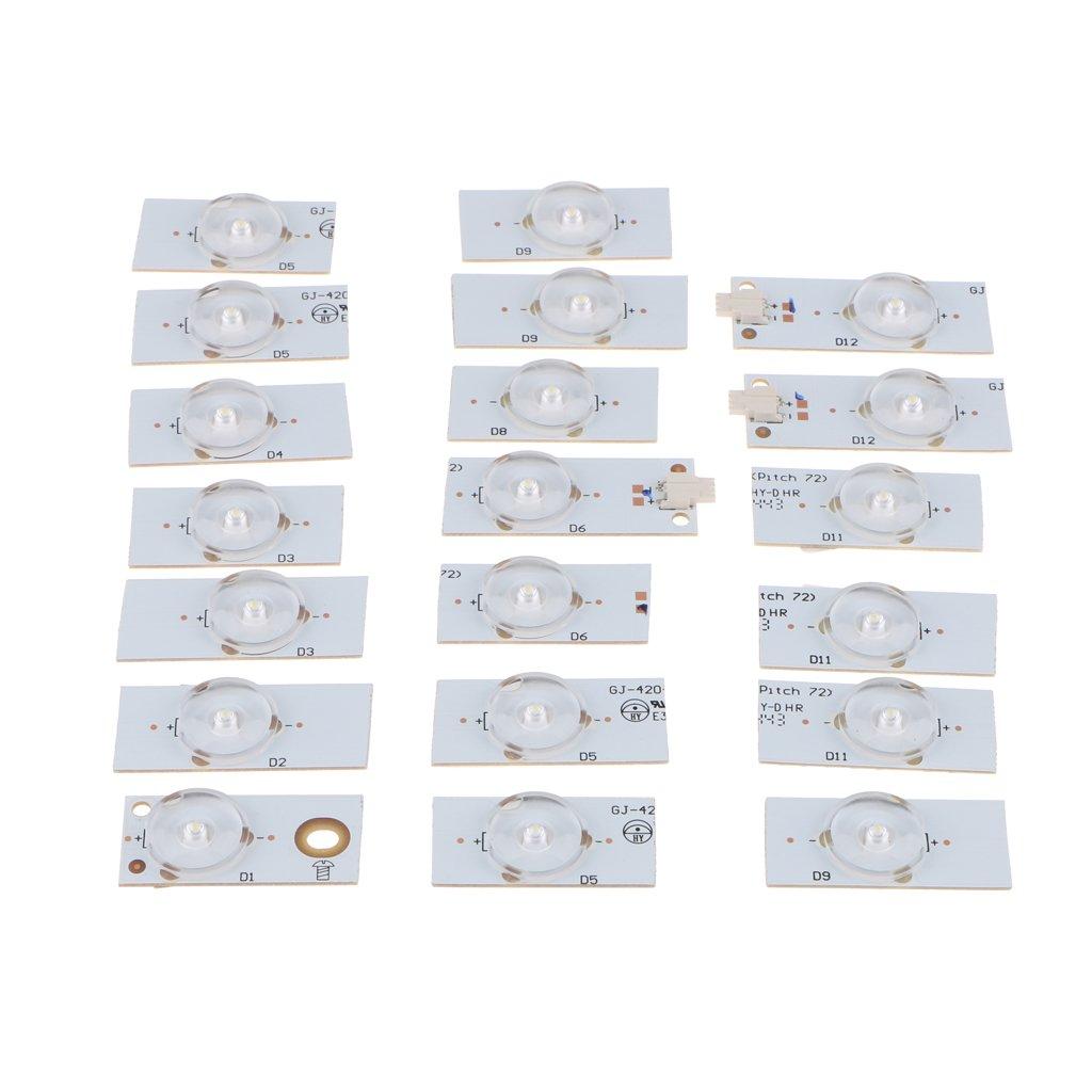 D DOLITY 20 Pcs 6V Lámpara Granos de LED con Filtro de Lentes ...