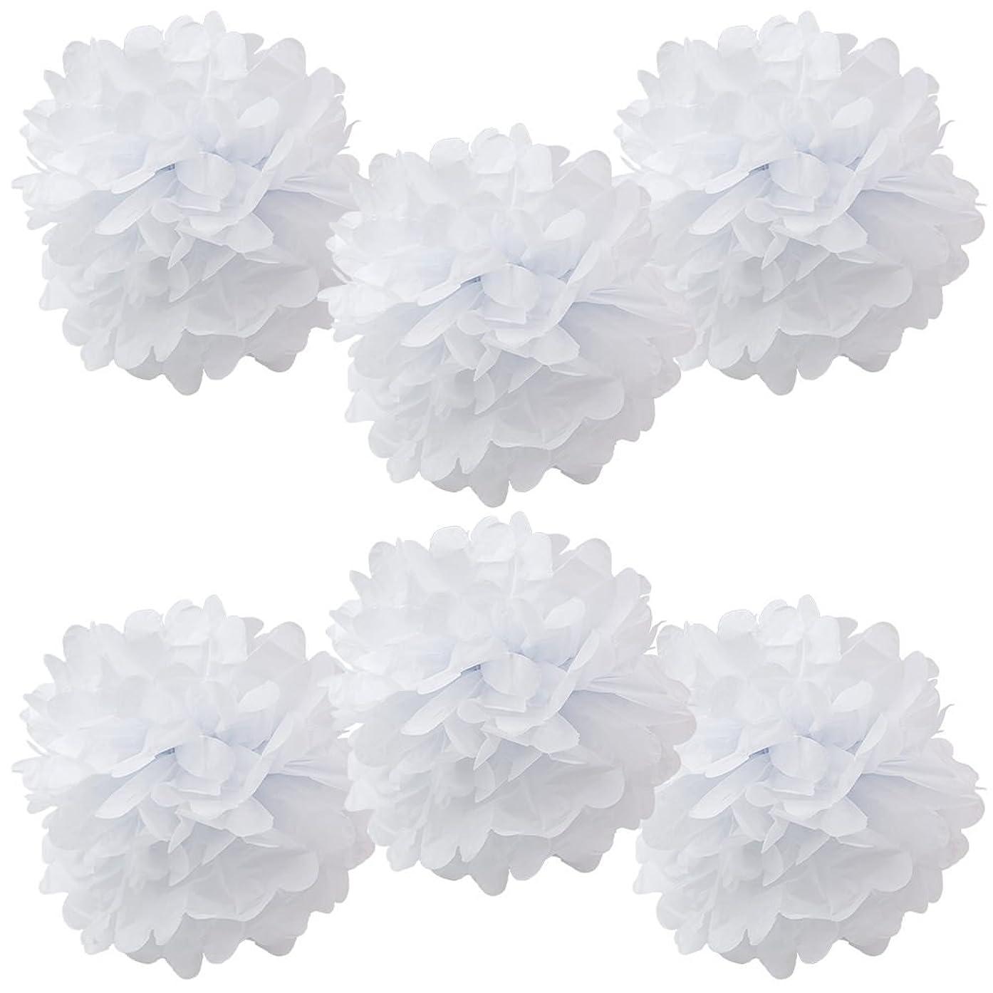 WYZworks Set of 6 - White 12