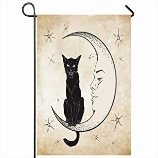 Best cat sitting on moon Reviews