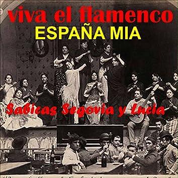 Viva el Flamenco España Mia