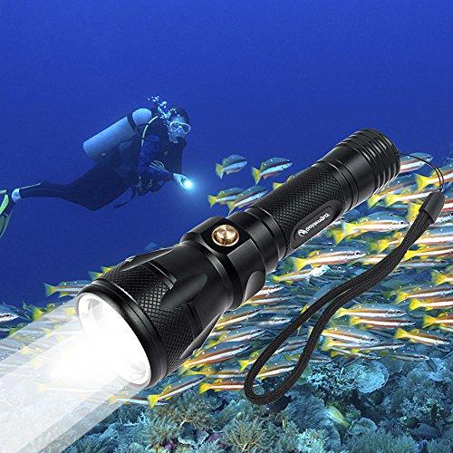 Goldenguy Scuba Dive Diving LED Flashlight Torch