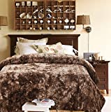Chanasya Super Soft Fuzzy Faux Fur Twin Bed Blankets - Fluffy Plush Lightweight Cozy Snuggly with Sherpa for Living Room Bedroom - Darkbrown Fall Winter Home Bedding (Twin) Chocolate Blanket