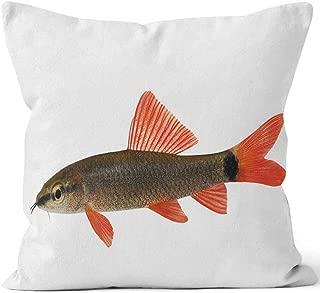 Nine City Rainbow Shark Catfish Epalzeorhynchos frenatum Aquarium Fish Isolated on White Home Decorative Throw Pillow Cover,HD Printing Square Pillow case,40