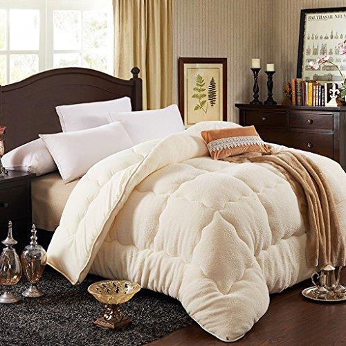 MMM Quilt Core Chambre d'étudiant Étudiant Dortoir Épais Gardez l'édredon chaud Double Literie individuelle ( Couleur : Beige , taille : 180*220cm(3kg) )