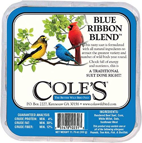 Blue Ribbon Blend Suet Cake + Frt