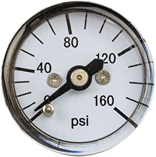 """PIC Gauge 102D-108F 1"""" Dial, 0/160 psi Range, 1/8"""" Male NPT Connection Size, Center Back Mount Dry Pressure Gauge with a B..."""