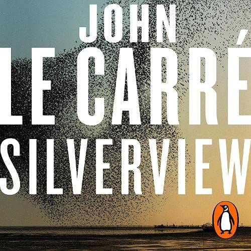 Silverview cover art