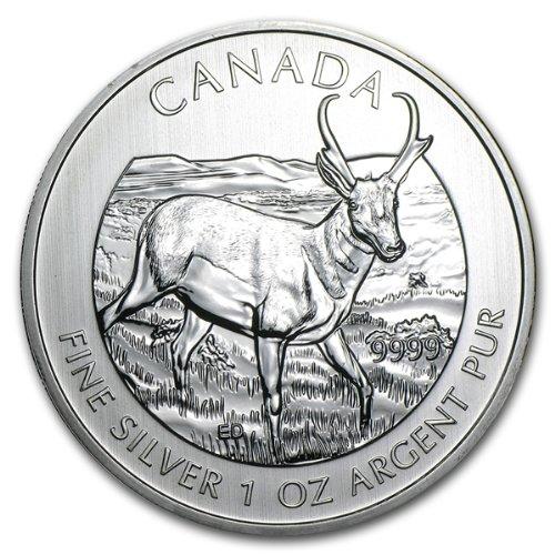 1 oz 5$ 999 Silber Silver Silbermünze Kanada Canadian Wildlife Antilope Antelope 2013 NEU Maple Leaf mit Echtheitszertifikat
