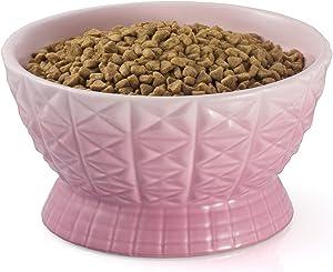 Raised Cat Bowl, 24 oz Ceramic Elevated Cat Bowl, Tilted Cat Food Bowl, 8