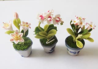 Dollhouse Flower Miniature in Pots Set Made of Artificial Clay Realistic it Very Cute. (3 Pots)