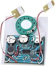 27s Musica Registrabile Modulo Sonoro Chip con Pulsante Controllo Cablato a Doppio Pulsante della Batteria