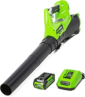 greenworks 40Vリープブロワー 充電式 430MPF 115CMF コードレス 手持ち型ブロワー 無段階風量調整 (2Ahバッテリー1個・充電器付) 家の清掃 洗車ハイパワー プッシュボタンスタート