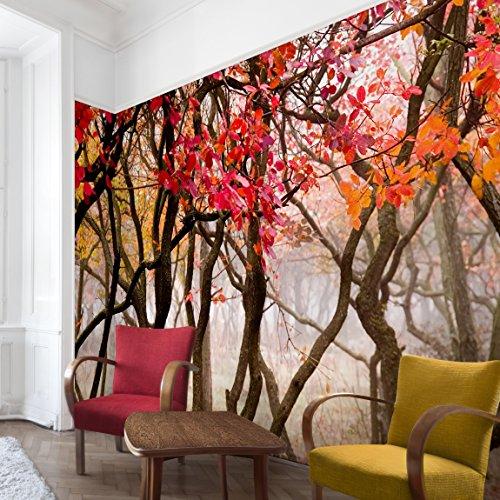Apalis Waldtapete Vliestapete Japan im Herbst Fototapete Wald Breit | Vlies Tapete Wandtapete Wandbild Foto 3D Fototapete für Schlafzimmer Wohnzimmer Küche | braun, 94951