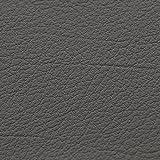 animal-design Kunst-Leder Restposten - 140 cm breit - Farbe