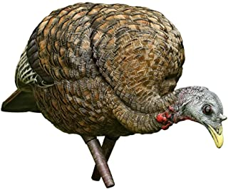 Avian-X Feeder Hen Turkey Decoy,  Lifelike Collapsible Decoy With Carbon Stake and Carry Bag