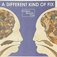 A Different Kind Of Fix by Bombay Bicycle Club (2012-01-17)