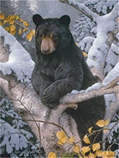 DIY Oil Painting Paint by Number Kit for Kids Adults Beginner 16x20 inch - Black Bear on The Branch, Drawing with Brushes Christmas Decor Decorations Gifts (Without Frame)