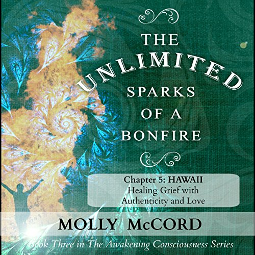 The Unlimited Sparks of a Bonfire, Chapter 5: Hawaii audiobook cover art