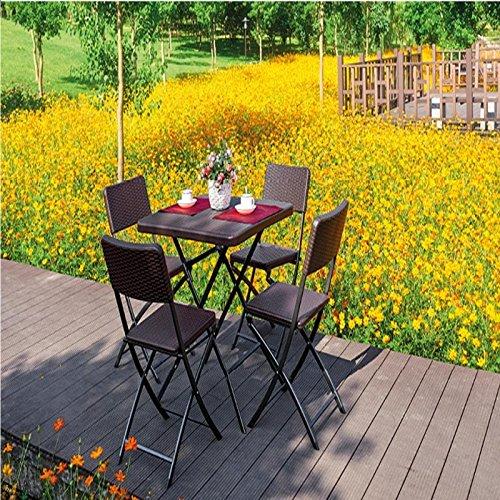 PRATIKO LIFE Caffe - Juego de Mesa y 4 sillas Plegables de polirratán