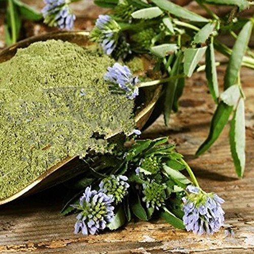 15PCS / Sac Sweer minette Graines Vanille Graines Nourriture Assaisonnement aromatisantes Herbes Comestibles Herbes épicées