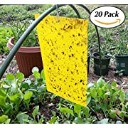 Fomei High Effect Dual-sided Yellow Sticky Fly Traps Whitefly, for Leaf Mine